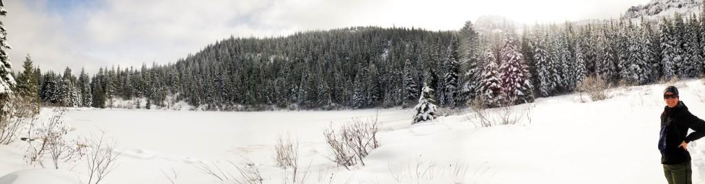 Snowshoe-7037